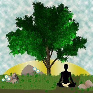 Kennismakingsworkshop mindfulness